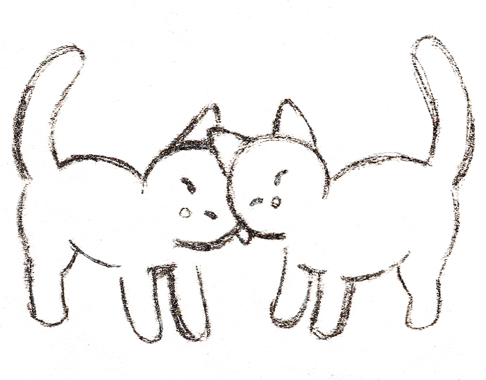 Cat Animation Sketch